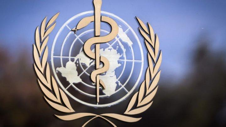 ВОЗ оценила ситуацию с выявлением случая бубонной чумы в Китае