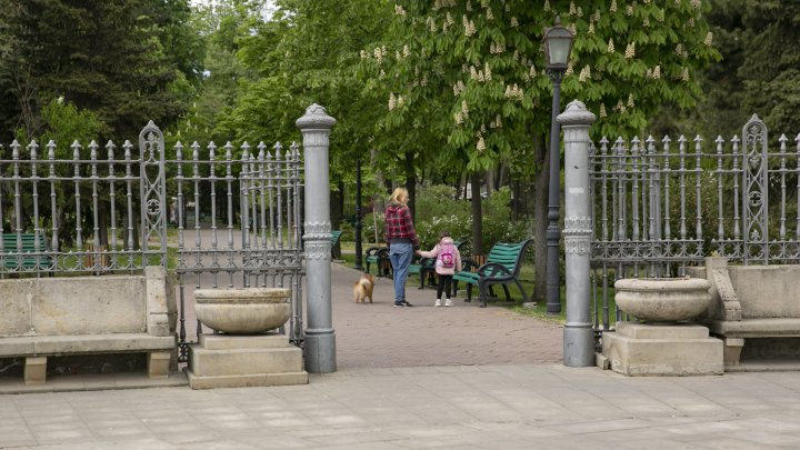 Меньше запретов с сегодняшнего дня. Как выглядят улицы и парки столицы после послабления карантинного режима (ФОТОРЕПОРТАЖ)