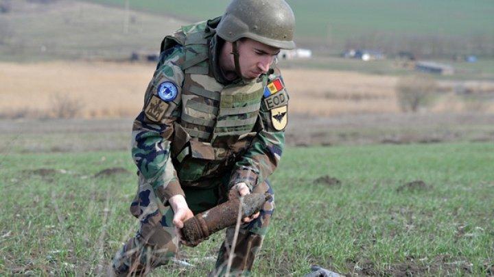 С начала года молдавские сапёры обезвредили почти 250 взрывоопасных предметов