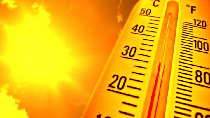 Египет на две недели накроет волна аномальной жары: в стране ожидается до +46 градусов
