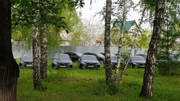 Миллионы под открытым небом: в челябинском лесу случайно нашли десятки новеньких Toyota Camry