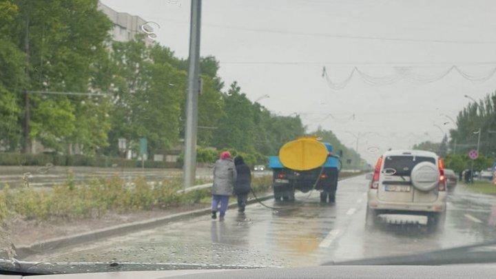 """Работников """"Зеленхоза"""" застали за поливкой цветов во время дождя: как это объяснил начальник предприятия"""