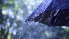 дождь, зонт, погода