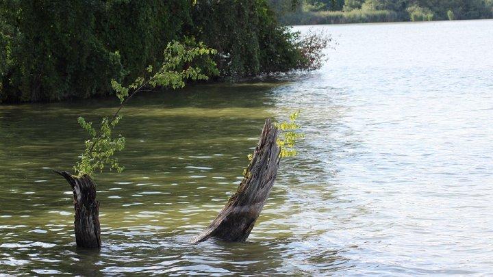 В Сынжерейском районе из озера достали тело 56-летнего мужчины