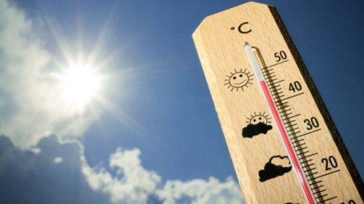 Июль этого года вошел в тройку самых жарких за последние три десятилетия