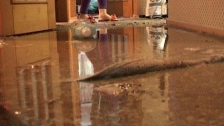 Жительница Бельц жалуется на соседей, которые затопили ее квартиру