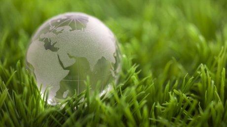 Эксперты: пандемия отложила День экологического долга в 2020 году на месяц