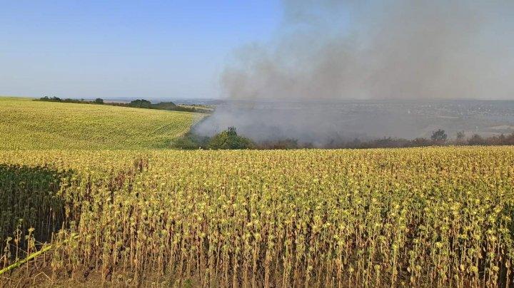 За сутки в Молдове потушили больше 40 возгораний