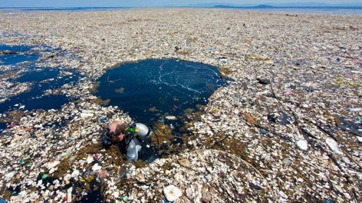 """Самый большой на планете """"мусорный остров"""" догнал по размерам Францию"""