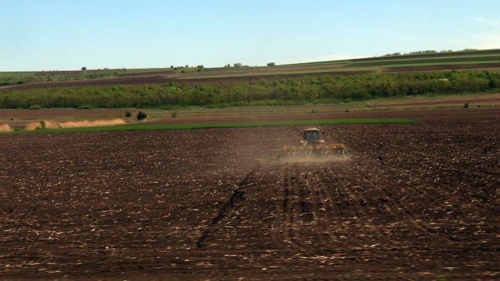 Молдавские фермеры в отчаянии: цены на горючее растут, а обещанного дизтоплива до сих пор нет