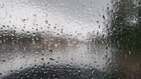 Не забудьте зонты: прогноз погоды на 16 апреля 2021