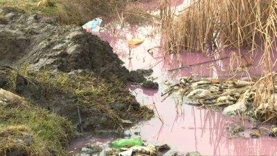 """""""Такого мы еще не видели"""": в Комрате стала розовой вода в реке Ялпуг"""