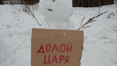 """В Архангельской области устроили """"митинг"""" снеговиков с лозунгами"""