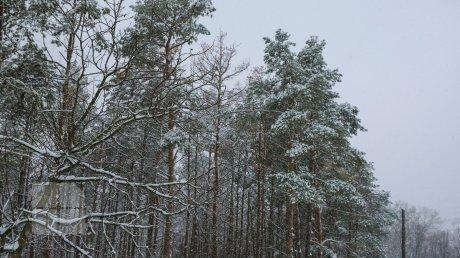 В Молдове прогнозируют снег: прогноз погоды на 25 января 2021