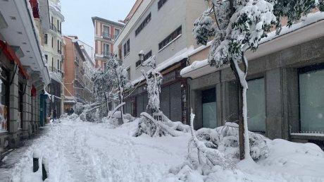 Подсчитан ущерб от непогоды в Испании: мэрия Мадрида продолжает устранять последствия снегопада