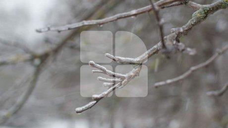 Синоптики обещают морозы: прогноз погоды на 17 января