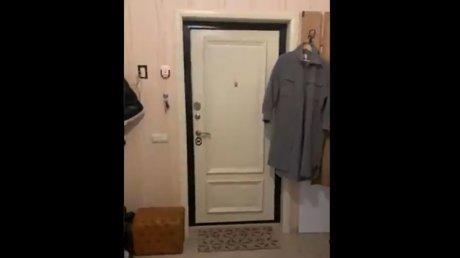 В квартиру Навального пришли с обыском (ВИДЕО)