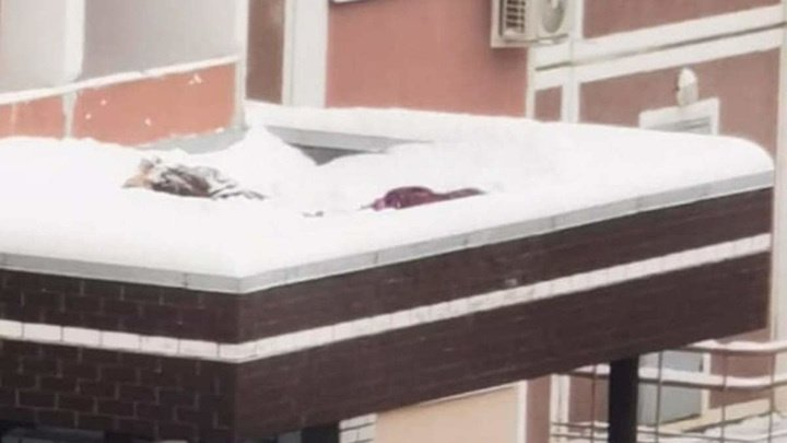 Делали фотографии на высоте: две девочки выпали с 17-го этажа в Подмосковье