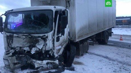 В Самарской области столкнулись легковой автомобиль и грузовик: семь человек погибли