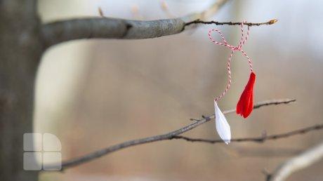 Молдову ждут температурные качели: прогноз погоды на 2 марта