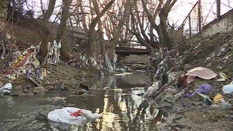 Горы мусора, гнилые ветки и надгробная плита: унылый пейзаж на берегу реки Бык