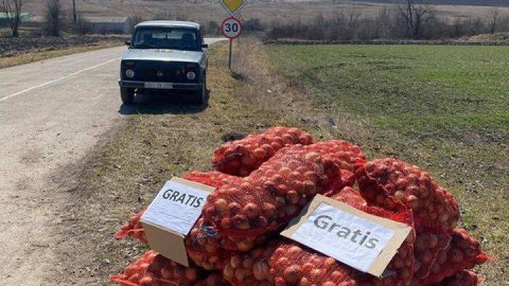 Фермер из Окницкого района решил раздать лук всем желающим (ФОТО)