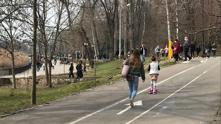 """Жители Кишинёва об инциденте со стрельбой в парке Валя Морилор: """"Владельцы собак должны позаботиться о намордниках для своих питомцев"""""""