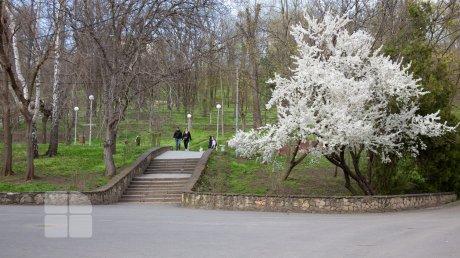 Синоптики обещают потепление: прогноз погоды на 14 мая
