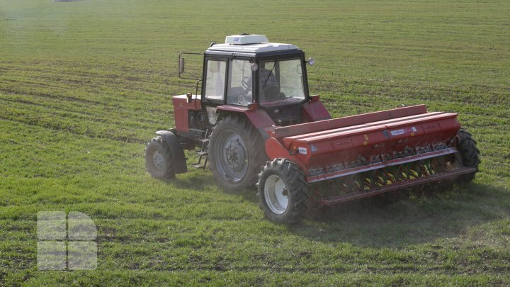 """Предупреждение для фермеров: в Молдове ожидаются """"температурные качели"""""""