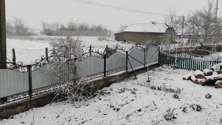 Весна на календаре, зима на улице: на севере страны выпал снег (ФОТО, ВИДЕО)