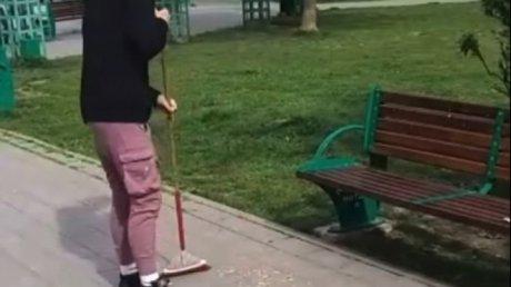 Щелкавших семечки на лавочке в Бухаресте заставили убрать за собой (ВИДЕО)
