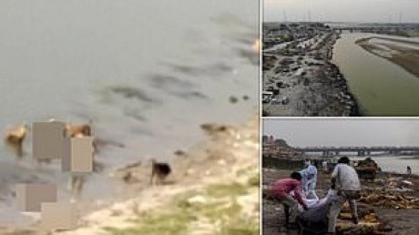 Жители севера Индии жалуются на жуткую вонь: из реки Ганг вылавливают десятки разложившихся трупов (ВИДЕО)