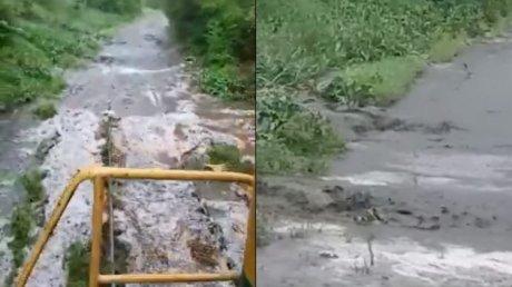 Погода не пощадила посевы в Гагаузии: из-за ливней и ветра пострадали 20 процентов полей