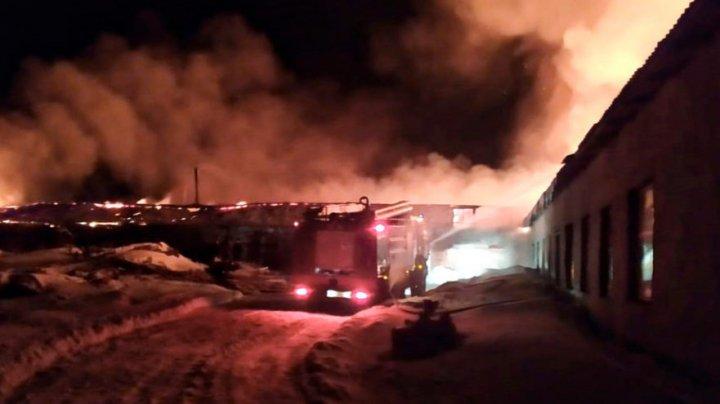 В России две юные тиктокерши сожгли ферму, снимая видеоролик