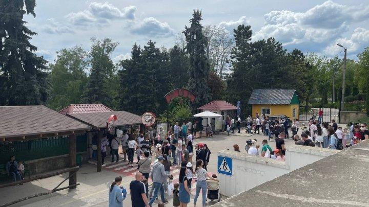 Очереди в зоопарк: в воскресенье жители столицы столпились у входа, забыв о предосторожностях