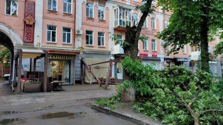 Разгул стихии в нескольких областях Украины: град, смерч, поваленные деревья и затопленные улицы