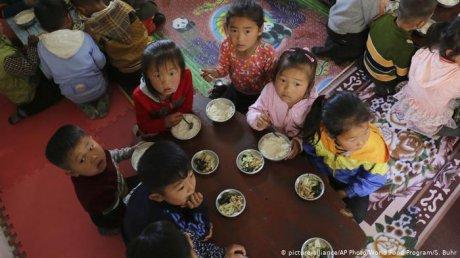Продовольственный кризис в Северной Корее: килограмм бананов там стоит 45 долларов