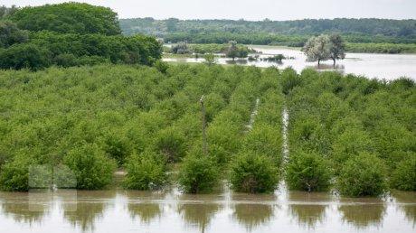 Метеорологи объявили желтый код опасности в связи с риском наводнений