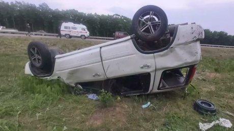 Клещ стал причиной ДТП с тремя пострадавшими в России