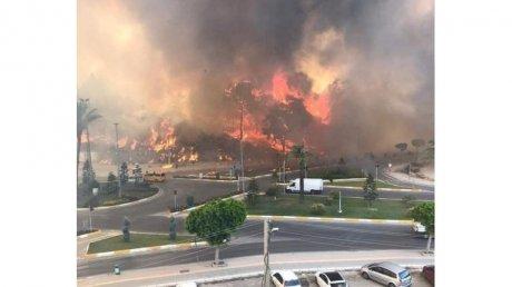 В турецкой провинции Анталья лесной пожар перекинулся на жилые районы