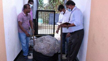 На Шри-Ланке нашли самый большой в мире звездчатый сапфир