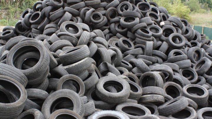 В Молдове могут появиться склады для использованных автомобильных шин