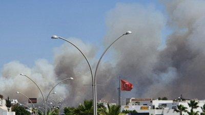 В Турции заявили о задержании подозреваемого в поджогах лесов