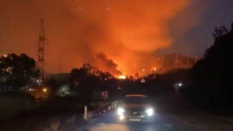 Лесной пожар охватил тепловую электростанцию в Турции