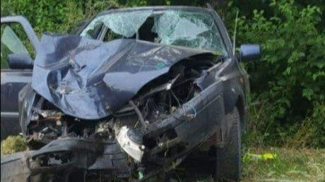 Пьяный водитель врезался в дерево в Единецком районе: вместе с ним были жена, ребёнок и ещё два пассажира