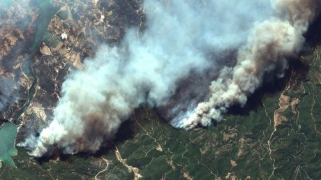 Группа отдыхающих из Молдовы решила покинуть Турцию из-за лесных пожаров
