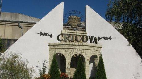 В Криково отпраздновали 590-летие первого упоминания города в документах