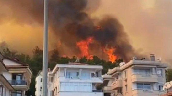 Турция просит помощи ЕС в борьбе с лесными пожарами